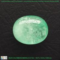 Jual Natural Emerald 23.73 Carat - Muzo Colombia Murah