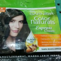 Garnier Color Naturals Express Cream