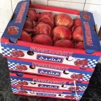 Jual Delima Merah / Red Pomegranate Murah