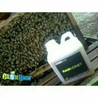 Jual Madu Budidaya KALIANDRA/KALENDRA asli murni RAW HONEY lebah Murah