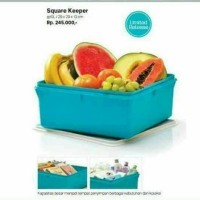 square keeper (1) Tupperware