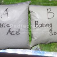 DIY CO2 Generator Aquascape Sitrun Citric Acid Baking Soda