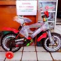 TERLARIS Sepeda Anak Cowok Bmx 12 Tremor
