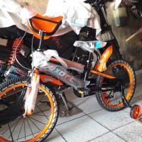 TERBARU Sepeda Anak Exotic 16in