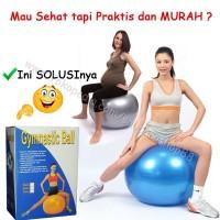 Jual Jual Gymball Fitnes/ Gymball Yoga / Gymball Unistar 75cm murah Murah