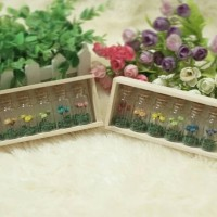 Magic flower Wood Case - Snowy flower, Botol kaca, Gift, Kado