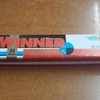 Harmonika Suzuki Winner 24 Holes - Best Price