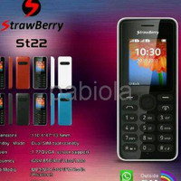 New Limited Hp strawbery ST22 model nokia 108