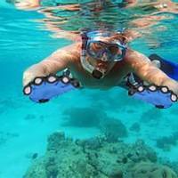 Sarung Tangan Nilon Katak Khusus Berenang