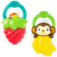 Teether Baby Bright Starts Vibrating Teether T1310