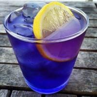 Teh Biru Murni Summafam - bunga telang kering - Pure Organic Blue Tea