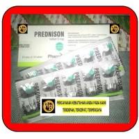 PREDNISON 5 MG TABLET 1 STRIP ISI 10 TABLET
