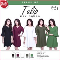 Jual Wedges Import Tulip Key Tunic Dress Gaun Pakaian Wanita DS854 Murah