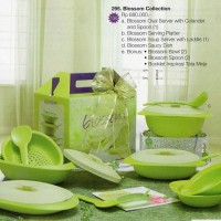 NEW LIMITED TUPPERWARE BLOSSOM COLECTION DINNER SET