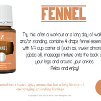 FENNEL 15ML (ORIGINAL & SEALED) YOUNG LIVING