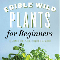 Edible Wild Plants for Beginners: The Essential Edible Plants