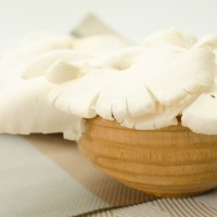 Jamur Tiram Putih / Oyster Mushroom (250 gr/ Pack)