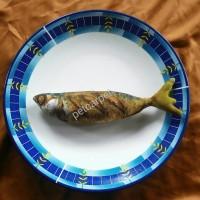 mainan kucing boneka ikan catnip kembung goreng