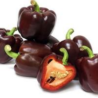 TERMURAH Benih Biji Paprika Cokelat Langka Import UK/ Inggris