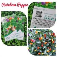 Bibit Cabe / Benih Cabai Pelangi/ Bolivian Rainbow Pepper Bell Import
