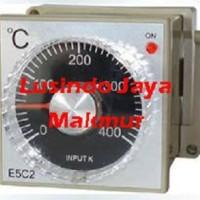 Analog Temperature Control E5C2