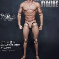 zc toys body 1 6 like ttm 19