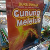 BUKU PINTAR MENGENAL BENCANA ALAM DI INDONESIA GUNUNG MELETUS.