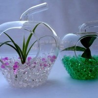 Hidrogel Hijau Media Tanam Unik & Cantik Cocok Indoor Green Hidrogel