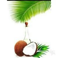 Minyak Vco, Jual Minyak Vco, Virgin Coconut oil asli