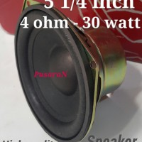 5 1/4 inch Speaker - 4 ohm / 30 W magnetic shield - Loudspeaker import
