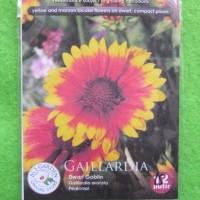 Benih Biji Bunga Gaillardia Dwarf Goblin Pack - Als Garden