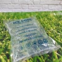 Home Depot Blue Ice |ice gel pendingin | Ice Gel Wiki 15 x 20 cm