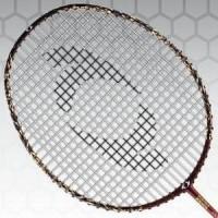 Raket Badminton ASTEC - Alan Budikusuma Series Promoo