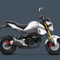Cover Set/Body Kit/ Cover Body Honda MSX 125 /Honda Grom Pearl White