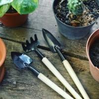 Paket Peralatan Berkebun (Gardening Tool) Sekop Mini 3 in 1