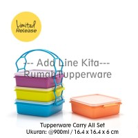 Tupperware Carry All Set