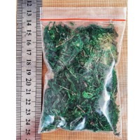 BEST.. Dried moss rumput kering bahan craft bahan dekorasi taman