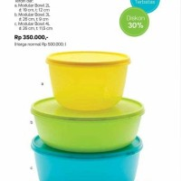 Modular Bowl Set Tupperware (reguler + junior bowl)