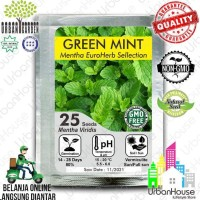 Benih Herbs - Benih Green Mint Mentha Import Bibit Bunga Tanaman Herba