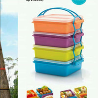 carry all set tupperware