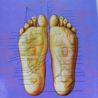 PROMO BARU Sandal Terapi Kaki Rematik Asam Urat Diabetes Akupuntur