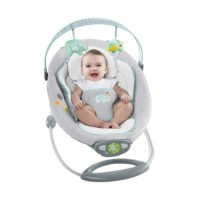 Weeler The Gentle Automatic Bouncer 6393 Limited