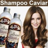 (Murah) CAVIAR SHAMPOO - SHAMPO KUDA - THE CAVIAR SHAMPOO