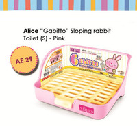 AE29 Alice Gabitto Sloping Toilet Small Pink Toilet Kelinci