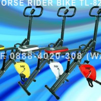 Sepeda Fitnes Statis Horse Power Rider Bike 2 Fungsi LAF-8218