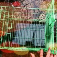 Jual Kandang Kucing Burung Kelinci Hamster Size M Murah