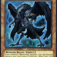 Blackwing - Elphin the Raven - WGRT-EN026 Super Rare LIMITED Edition