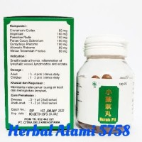 BARU Hernis pill - Obat Hernia & Radang Buah Pelir TERMURAH