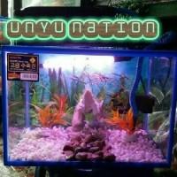Harga best seller aquarium nikita 40 cm | Pembandingharga.com