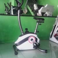 Sepeda statis magnetik TL 501 B,sepeda magnetik murah